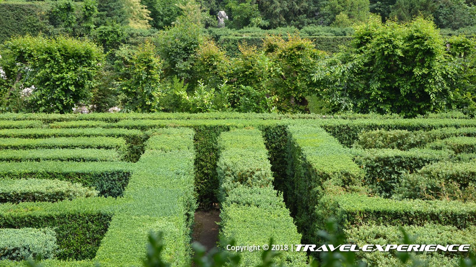 foto Labirinto di bosso di Villa Barbarigo a Valsanzibio