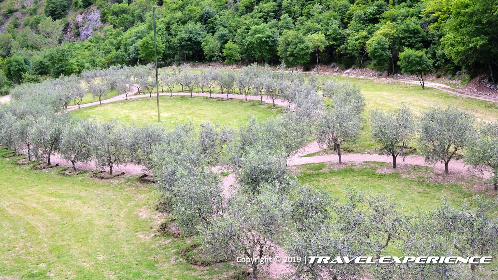 Bosco di San Francesco, Assisi, Terzo Paradiso, FAI